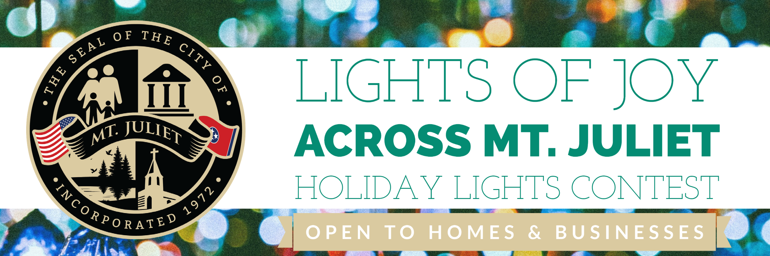 Holiday Lights Banner